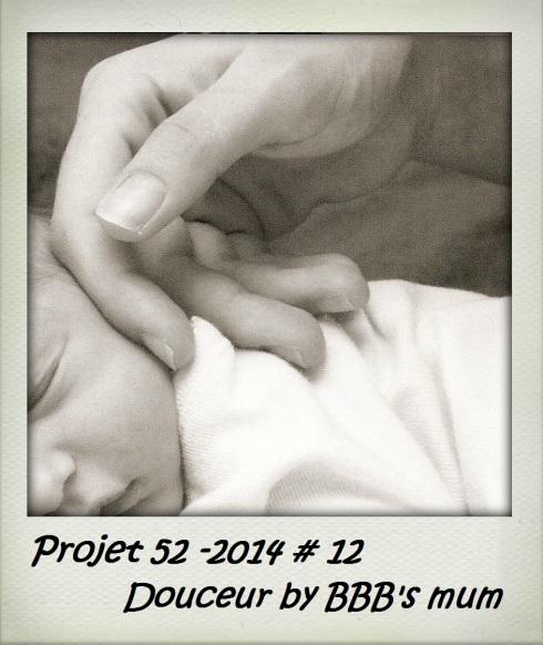 projet52-12