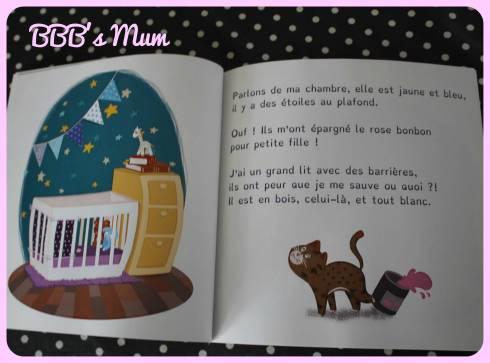 livres dys auchan bbbsmum (1)