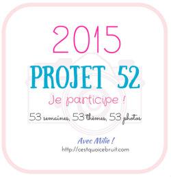 logo projet 52-2015