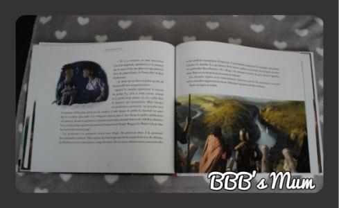 108 rois démons bbbsmum (9)
