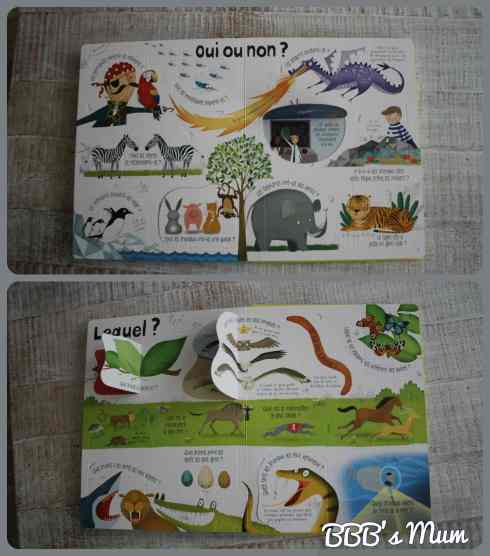 questions reponses animaux usborne bbbsmum (2)