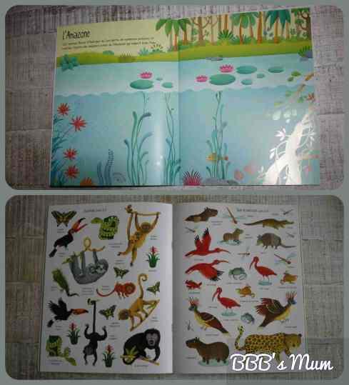 livres d'activités juin 2015 bbbsmum (13)