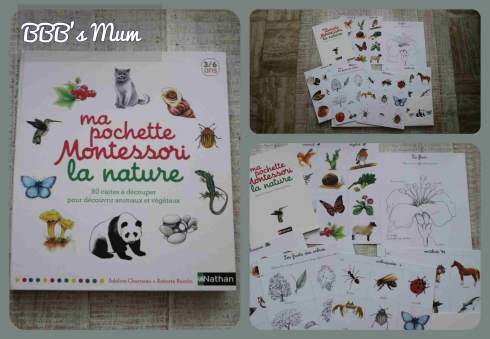 montessori et nous bbbsmum (5)