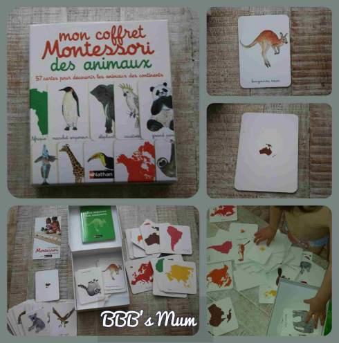 montessori et nous bbbsmum (8)
