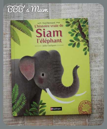 siam l'éléphant nathan bbbsmum (1)