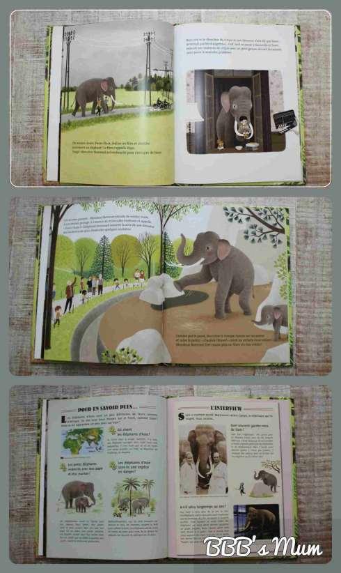 siam l'éléphant nathan bbbsmum (3)