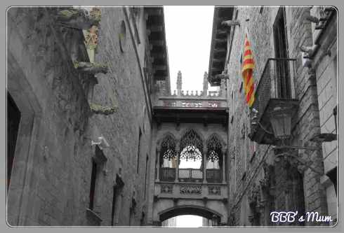 barcelone by bbbsmum 2015 (8)