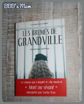 les brumes de grandville bbbsmum (2)