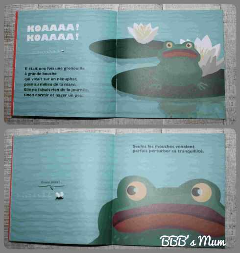 des histoires de grenouille bbbsmum (6)