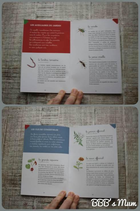 montessori et jardin (3)