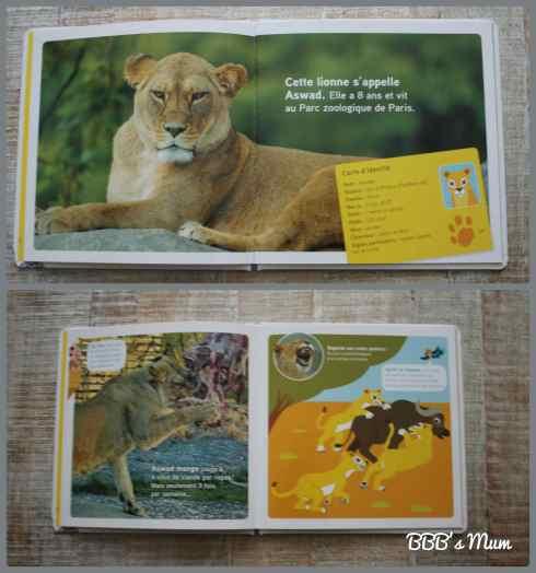 animaux nathan bbbsmum (5)