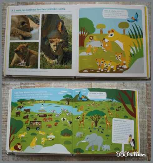 animaux nathan bbbsmum (6)