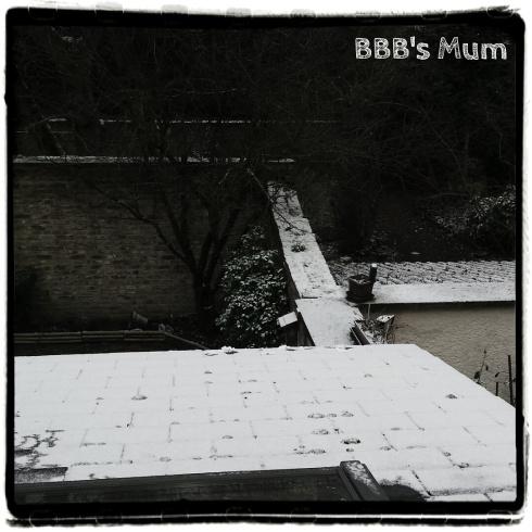 sem-06-2017-bbbsmum-8